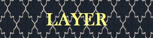 LAYER 510